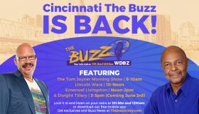 The BUZZ is back